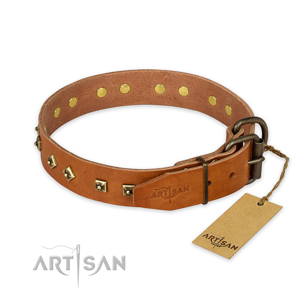 Corrosion resistant hardware on full grain leather collar for everyday walking your four-legged friend