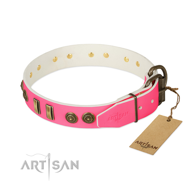 Rust resistant adornments on full grain genuine leather dog collar for your dog