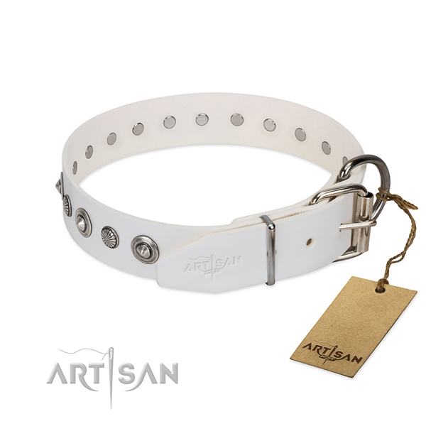 Top notch natural leather dog collar with awesome embellishments