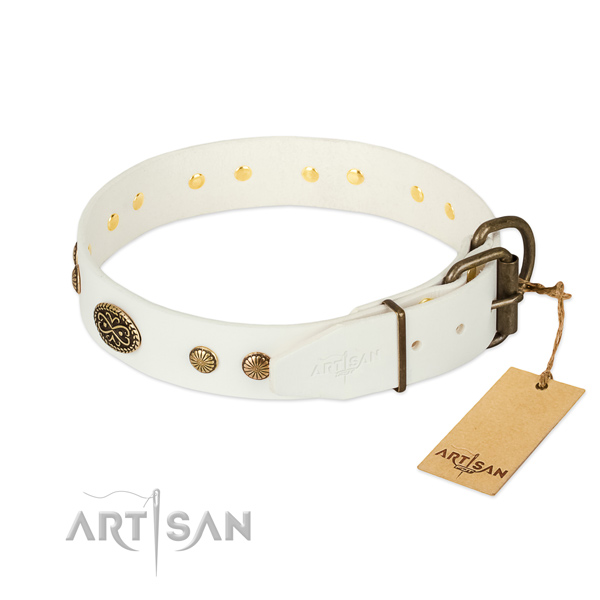 Rust-proof embellishments on genuine leather dog collar for your canine