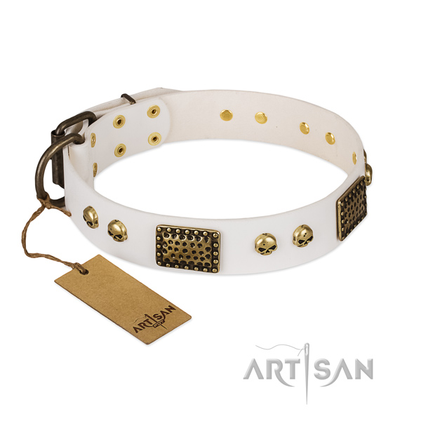 Corrosion proof embellishments on comfortable wearing dog collar