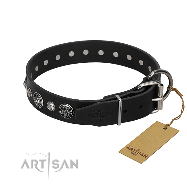 Fine quality full grain leather dog collar with extraordinary adornments