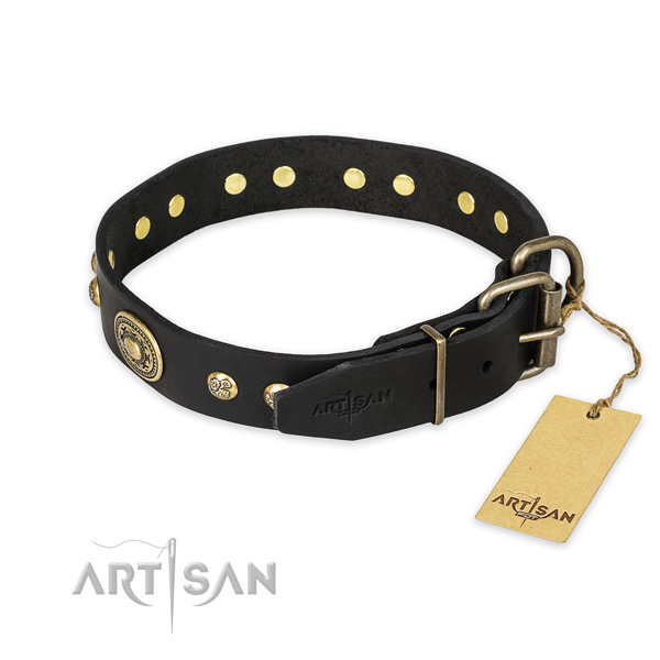 Durable traditional buckle on leather collar for daily walking your canine