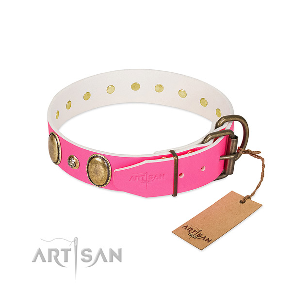 Daily use top rate leather dog collar