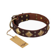 """Golden Square"" FDT Artisan Brown Leather Amstaff Collar with Large Squares"
