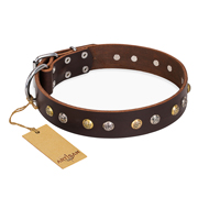 """Rare Flower"" FDT Artisan Brown Leather Amstaff Collar Adorned with Old-look Hemisphere Studs"