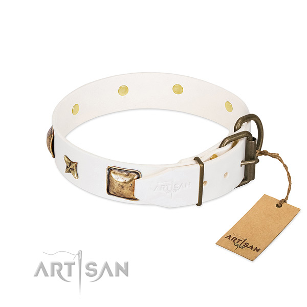 Full grain natural leather dog collar with durable fittings and adornments