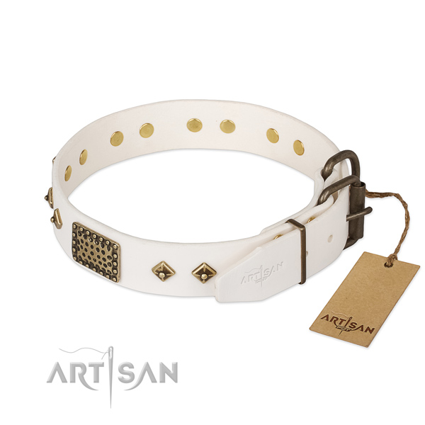 Genuine leather dog collar with durable fittings and decorations