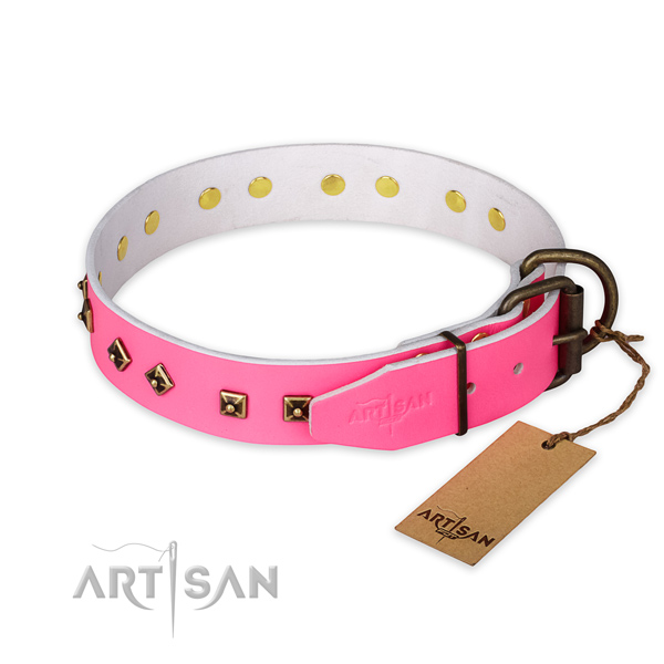 Reliable hardware on genuine leather collar for everyday walking your canine