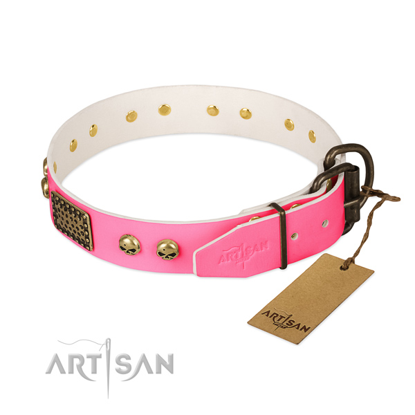 Reliable decorations on handy use dog collar