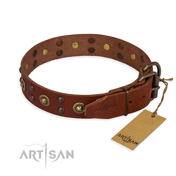 Reliable hardware on full grain natural leather collar for your impressive four-legged friend