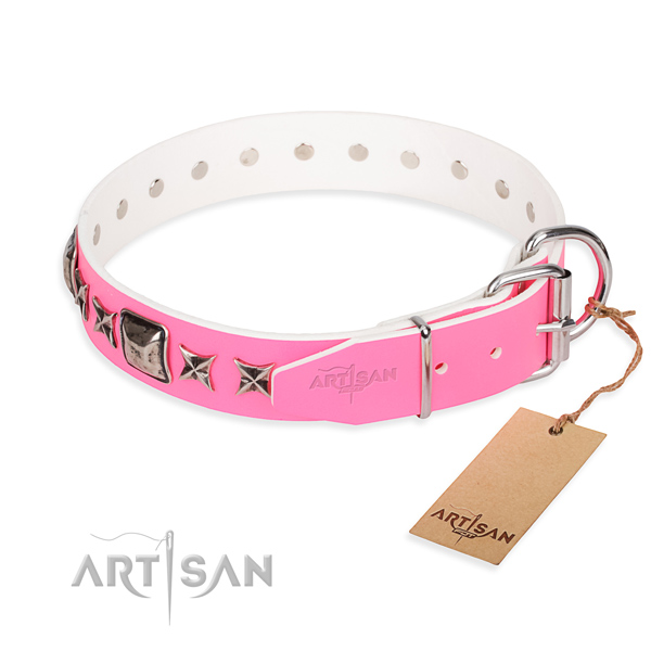 Strong studded dog collar of full grain natural leather