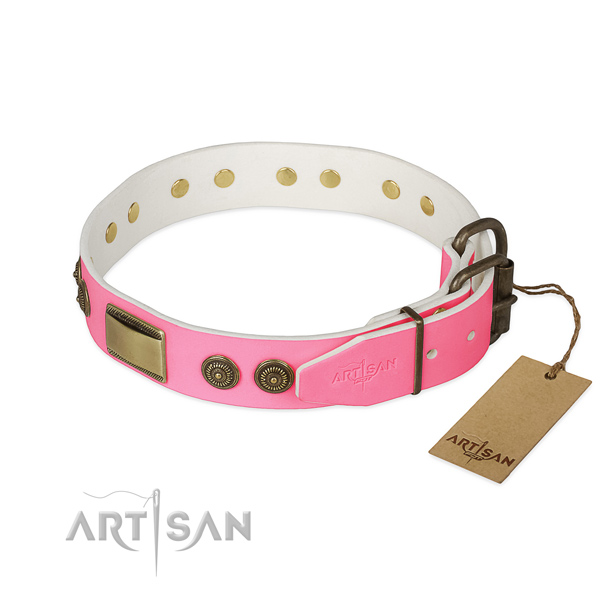 Strong hardware on daily walking dog collar