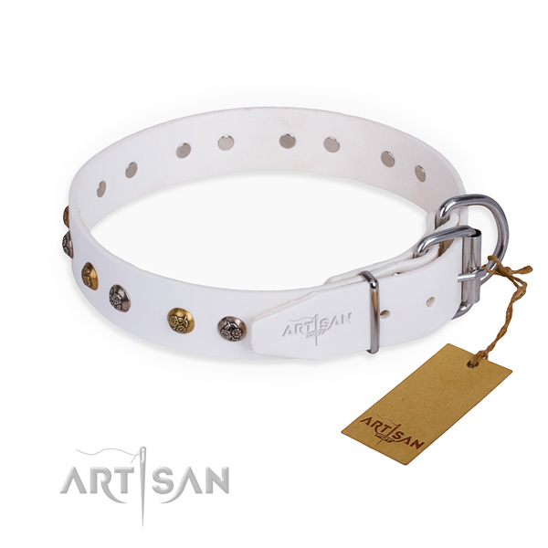 Full grain leather dog collar with stylish corrosion proof studs