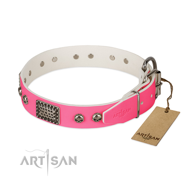 Corrosion proof decorations on everyday use dog collar