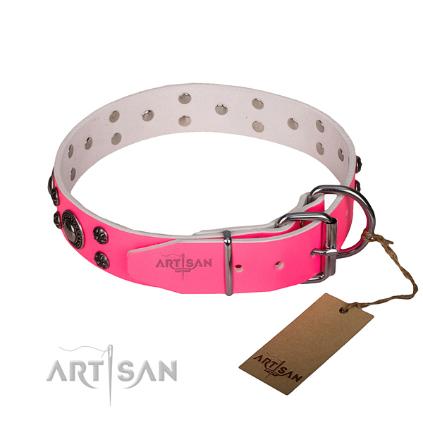 Basic training adorned dog collar of high quality leather