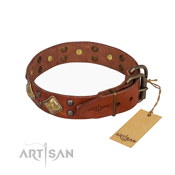 Genuine leather dog collar with incredible rust resistant studs