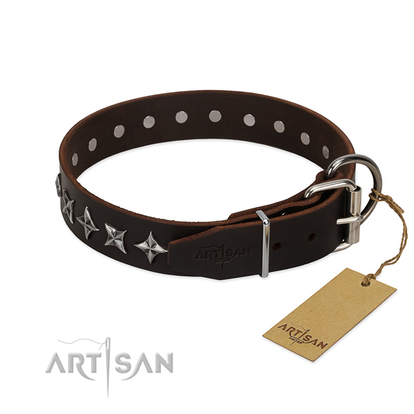 Everyday walking decorated dog collar of high quality full grain leather
