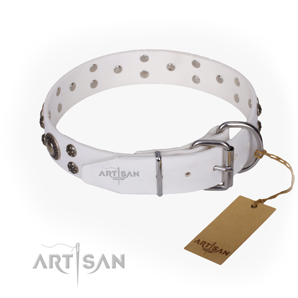 Walking embellished dog collar of strong natural leather
