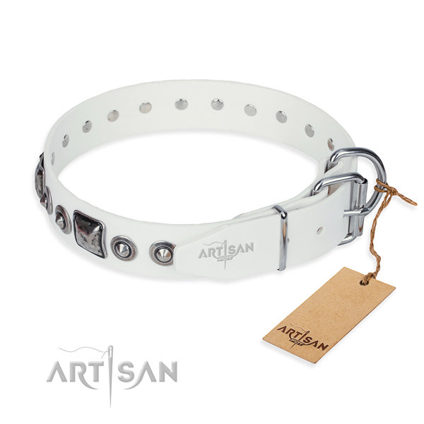 High quality genuine leather dog collar crafted for basic training