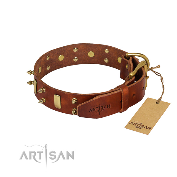 Walking decorated dog collar of reliable natural leather