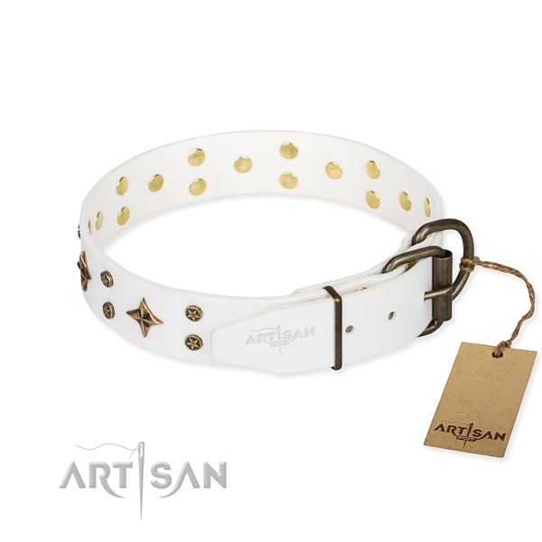Daily use embellished dog collar of finest quality natural leather