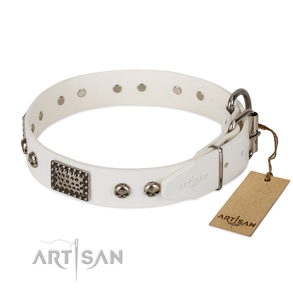 Corrosion proof hardware on comfy wearing dog collar