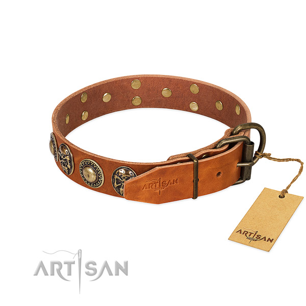 Durable decorations on handy use dog collar