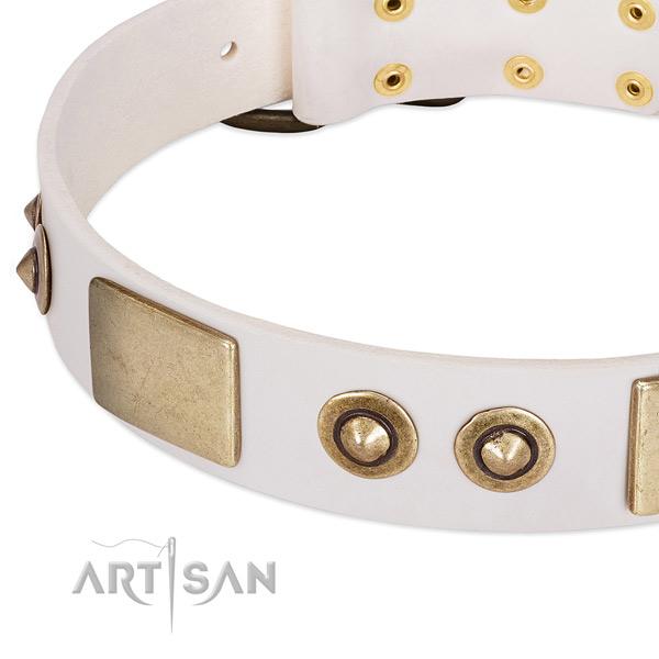 Rust-proof D-ring on leather dog collar for your pet