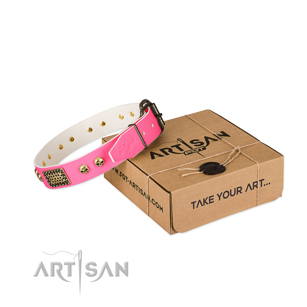 Reliable decorations on dog collar for basic training