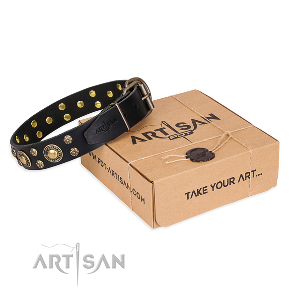Daily use dog collar of quality natural leather with decorations
