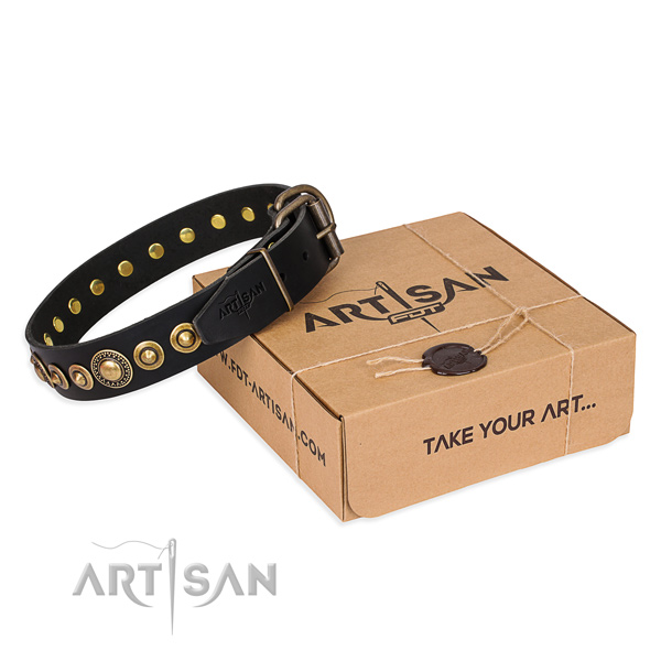 Top rate full grain genuine leather dog collar created for everyday use