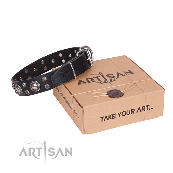 Daily use dog collar of best quality natural leather with embellishments