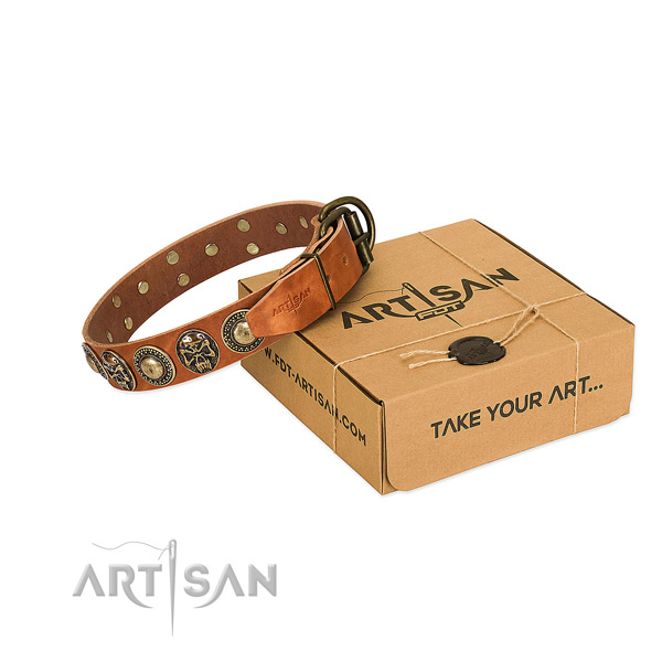 Reliable buckle on dog collar for comfortable wearing