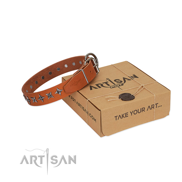 Easy wearing dog collar of high quality genuine leather with adornments