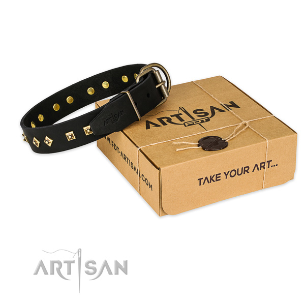Strong hardware on genuine leather collar for your beautiful canine