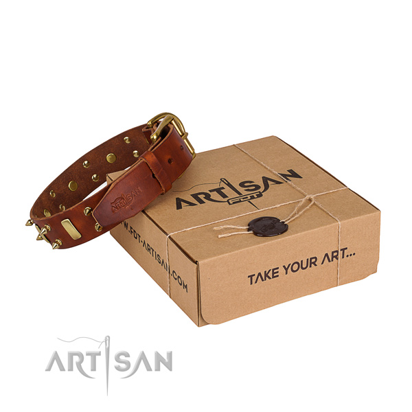 Daily use dog collar of strong full grain leather with decorations
