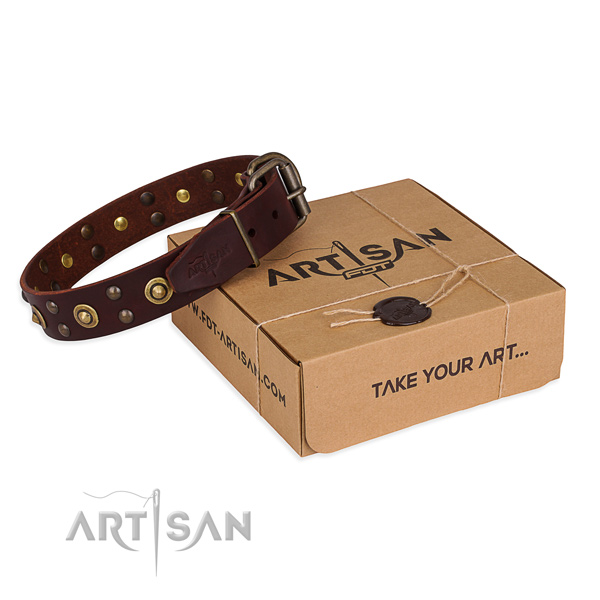 Durable traditional buckle on genuine leather collar for your lovely four-legged friend