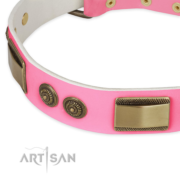 Natural genuine leather dog collar with embellishments for everyday use