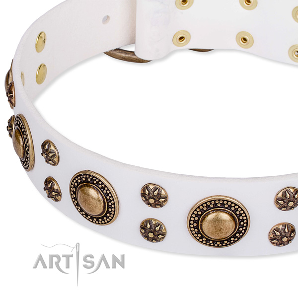 Easy wearing studded dog collar of quality genuine leather