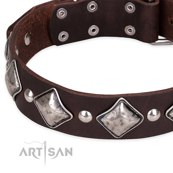 Everyday use adorned dog collar of durable leather