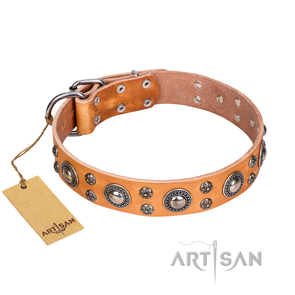 Easy wearing dog collar of quality full grain genuine leather with adornments