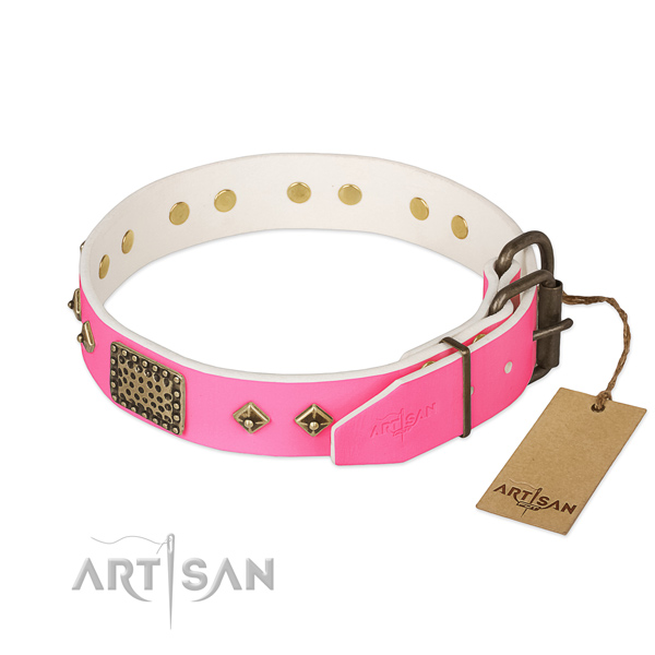 Corrosion resistant studs on handy use dog collar