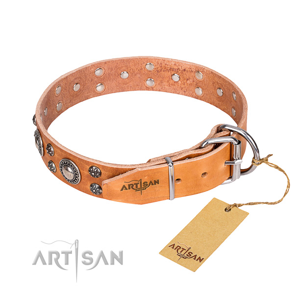Daily walking decorated dog collar of top quality leather