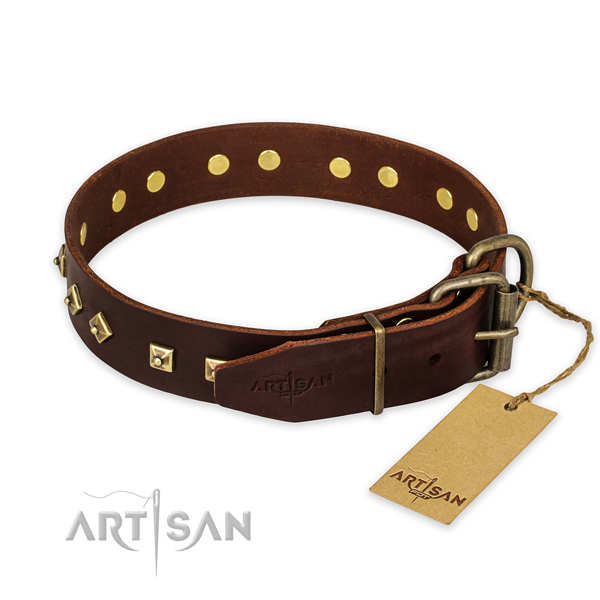 Rust-proof fittings on full grain leather collar for walking your doggie