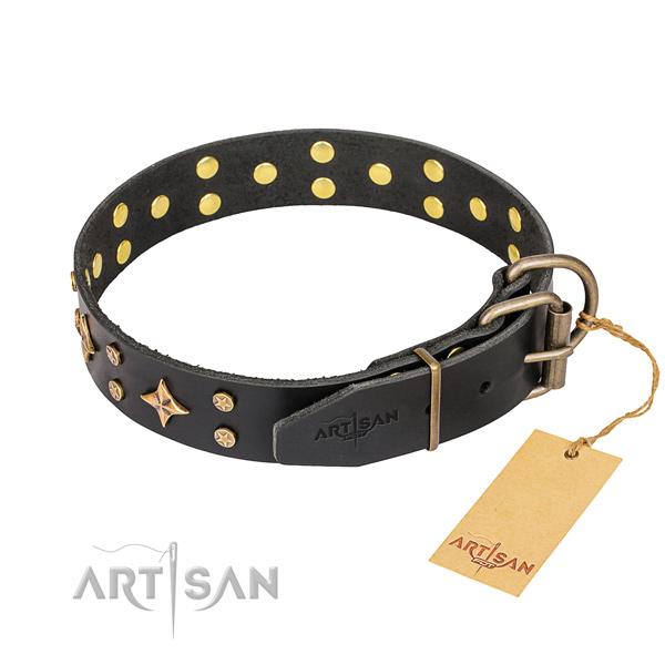 Daily use embellished dog collar of reliable full grain natural leather