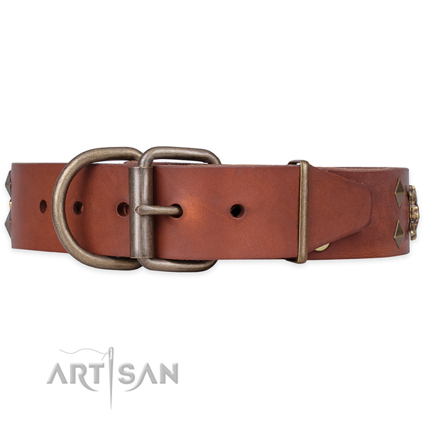 Daily walking studded dog collar of best quality full grain natural leather