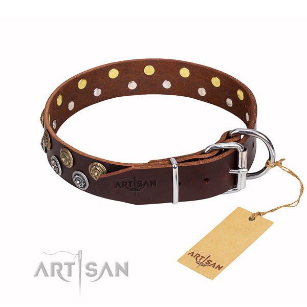 Daily use embellished dog collar of high quality leather