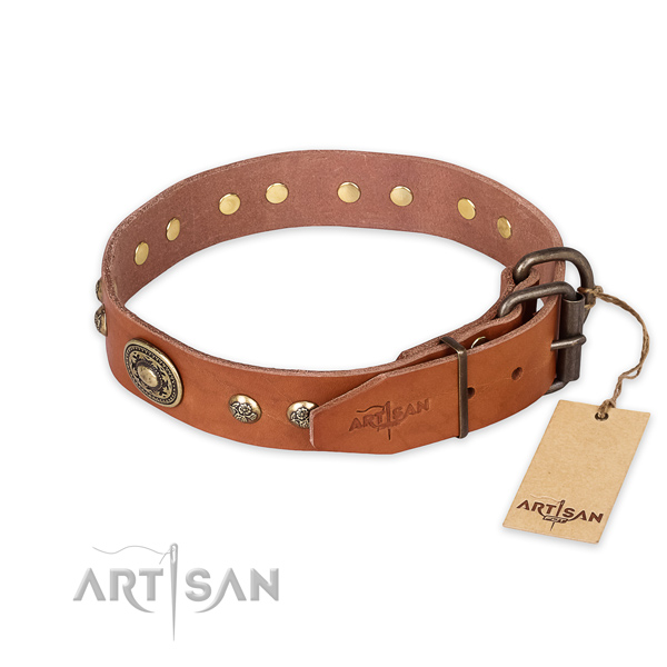 Corrosion proof traditional buckle on full grain genuine leather collar for everyday walking your doggie