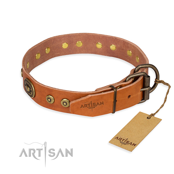 Leather dog collar made of best quality material with rust-proof adornments